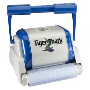 Tiger-Shark-1